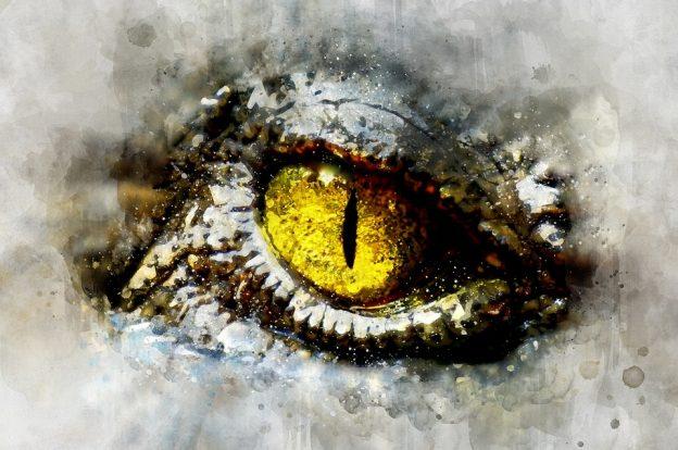 micol fusca edizioni open buio notte andrea bindella romanzo fantasy thriller fantascienza