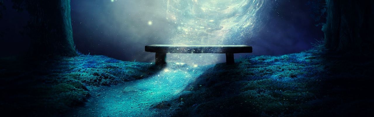 fantascienza andrea bindella terra 2486 anima sintetica inganno imperfetto thriller